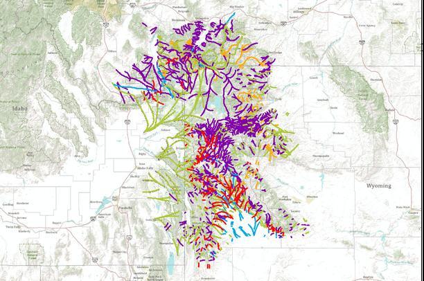 WCS Greater Yellowstone Ungulate Migration  Data Basin