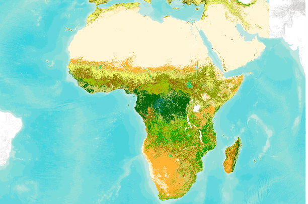 Land Africa Land Cover Africa And The