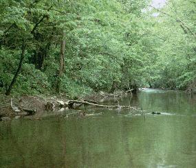 Freshwater Aquatic Resources