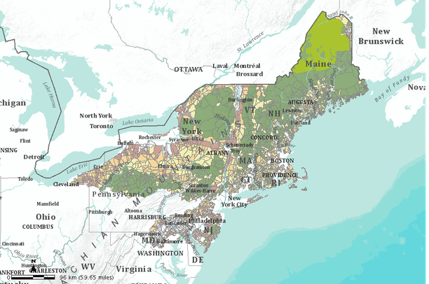 Threatened Species And Forest Fragmentation Northeast US Data Basin - Northeast us map