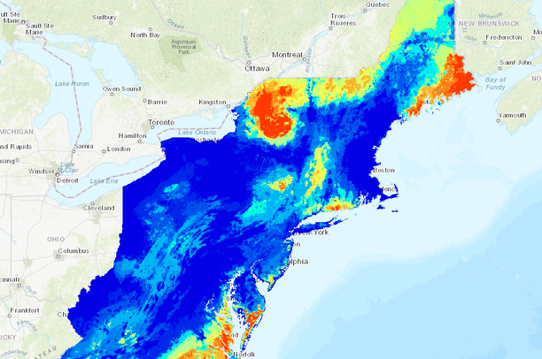 Northeast Stopover Sites for Migratory Landbirds