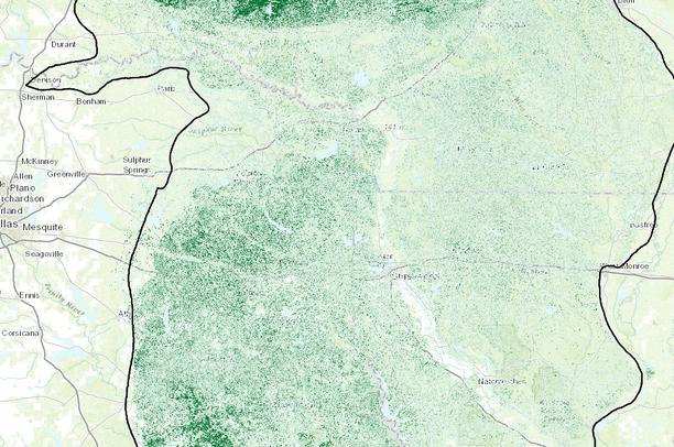 Shortleaf pine basal area - West Gulf Coastal Plain | Data Basin