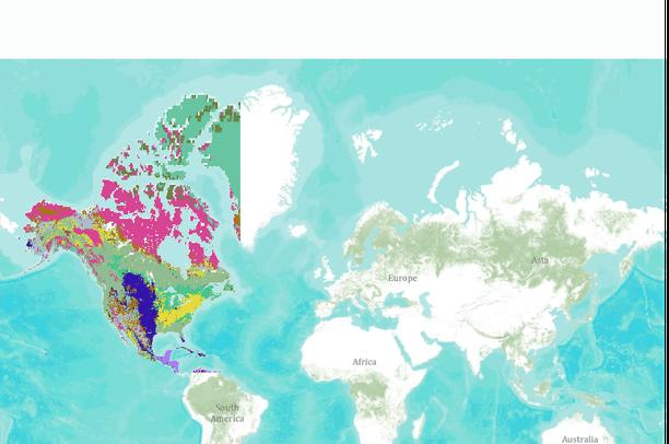 SYNMAP North America Potential Vegetation Data Basin