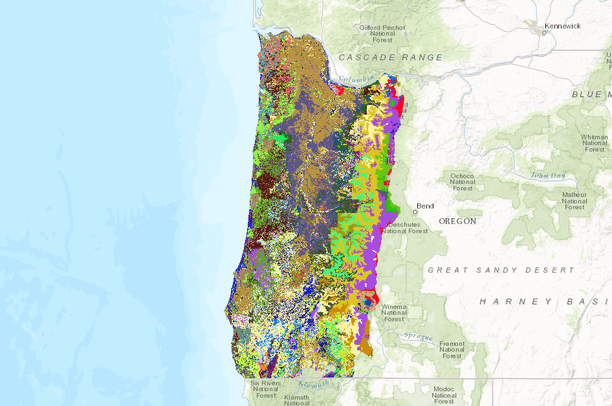 Western Oregon Soil Texture Data Basin