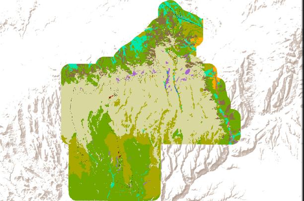 Spatial Vegetation Data for Mesa Verde National Park and ...