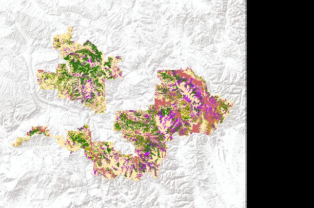 White River National Forest (Colorado, USA) - Lynx Habitat | Data Basin