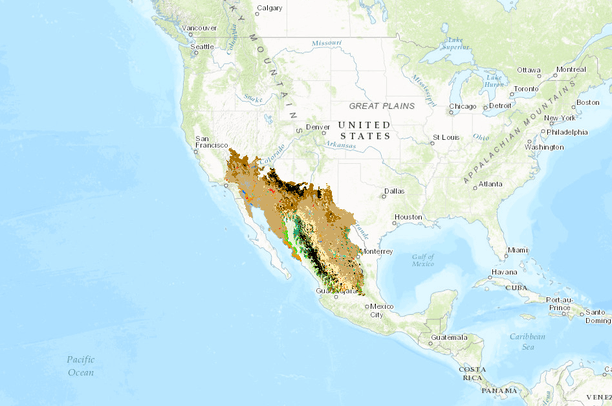 2010 Land Cover of North America at 250 meters   Desert LCC CPA
