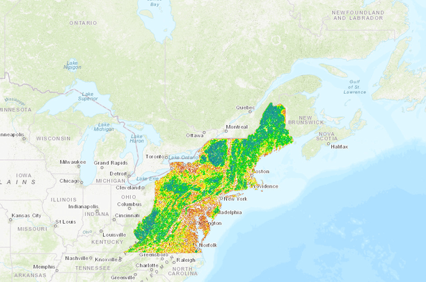 Landscape Capability For American Black Bear Version 3 0 Northeast