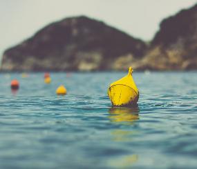 California Marine Fishing and Traditional Uses