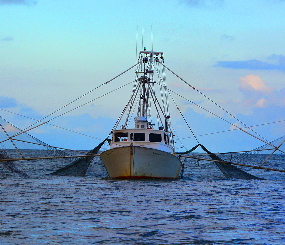 California Marine Fishing and Traditional Uses