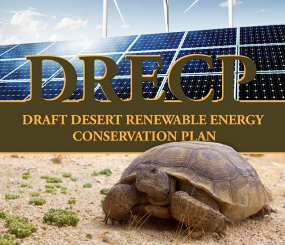 Draft DRECP Environmental Impact Report / Environmental Impact Statement