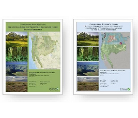 Conserving Nature's Stage:   Identifying Resilient Terrestrial Landscapes in the Pacific Northwest