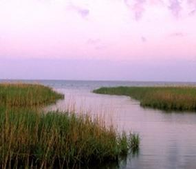 Evaluation of Regional Sea Level Affecting Marshes Model (SLAMM)