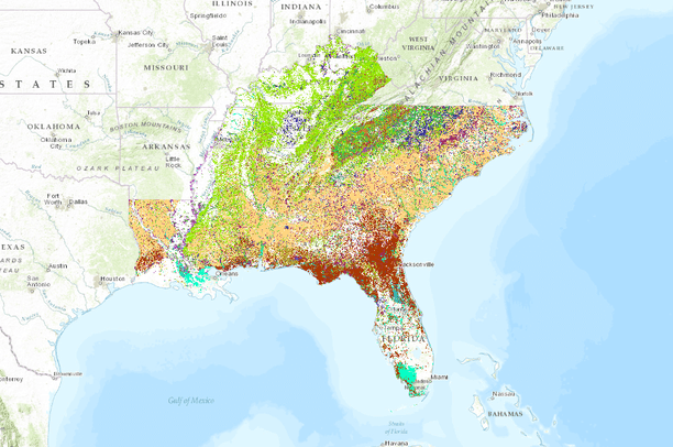 US Forest Service - FIA Forest Types of the Southeastern United ...