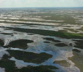 Climate Adaptation Scenario Planning - Pilot Program