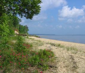 USFS North Carolina Coastal Plains Region