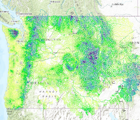 Mapping Pacific Northwest Riparian Areas: Measuring Current Condition and Prioritizing for Climate Change Adaptation