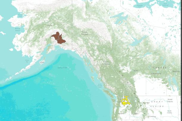 Western Native Fish