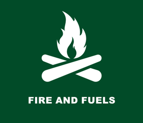 USFS Fire and Fuels
