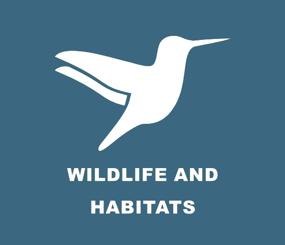 USFS North Carolina Wildlife and Habitats