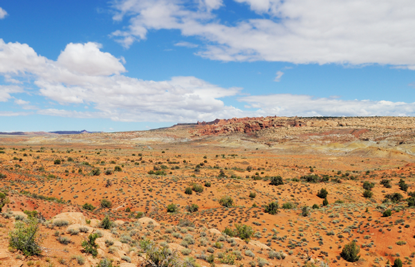 Climate Change Adaptation Strategies for BLM Resource Management in Southern Nevada Thumbnail