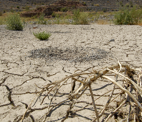 Precipitation change and drought