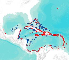 WIDER CARIBBEAN DATASETS